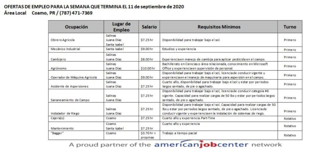 Empleos: Hasta 11 sept. 2020