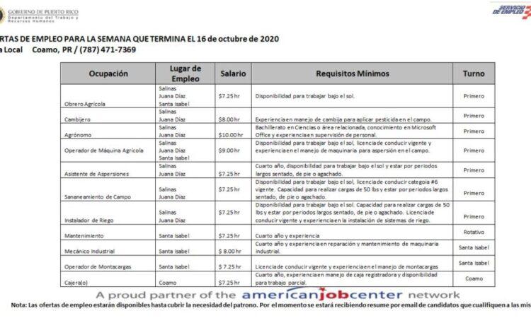 Empleos: Hasta 16 de octubre 2020