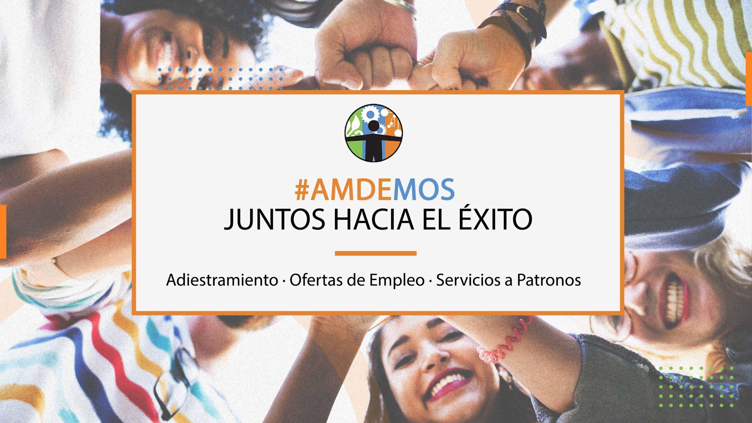 presentacion-AMDE
