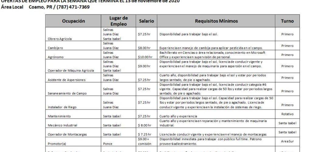 Empleos: Hasta 13 de Nov. 2020