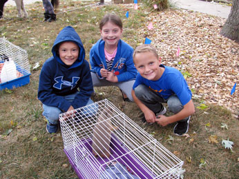 For the Feast of St. Francis we had a petting zoo at ICS.