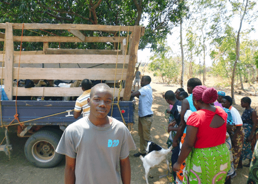 Determined to Develop Expands Womens Revolving Goat Project 1