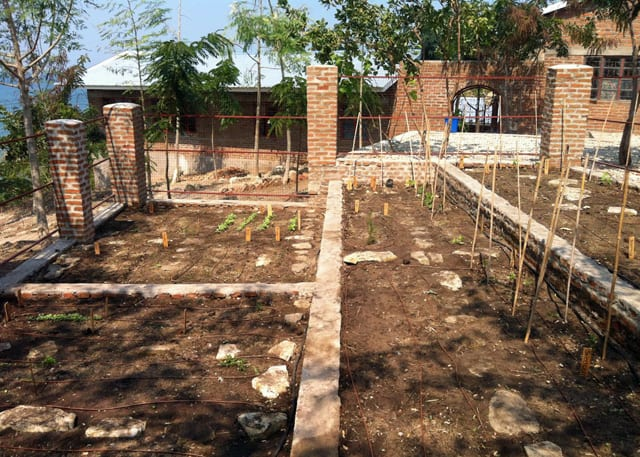 New Garden at Determined to Develop 1