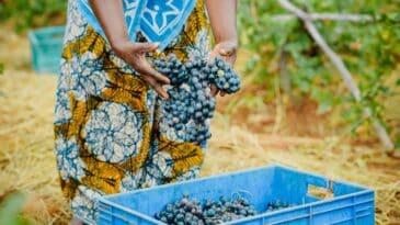 farm workforce modernization act
