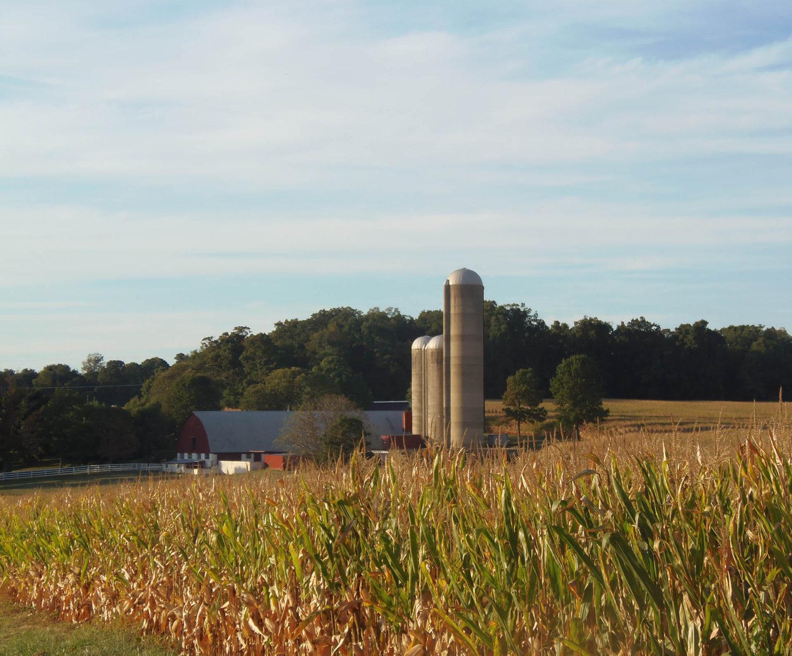 Highland Township Farm Scene