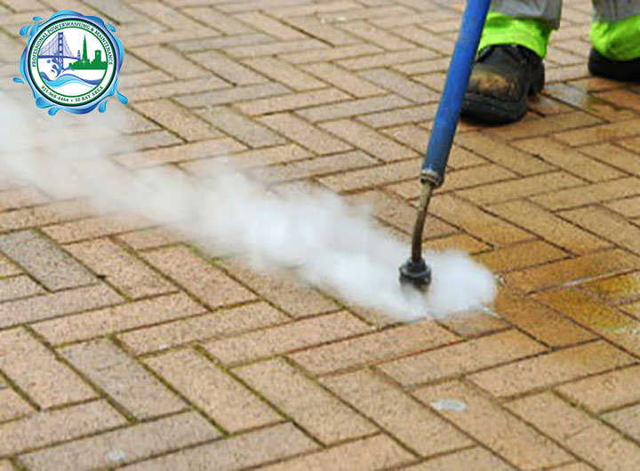 chewing gum removal service