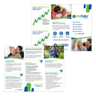 WePellet Brochure Design
