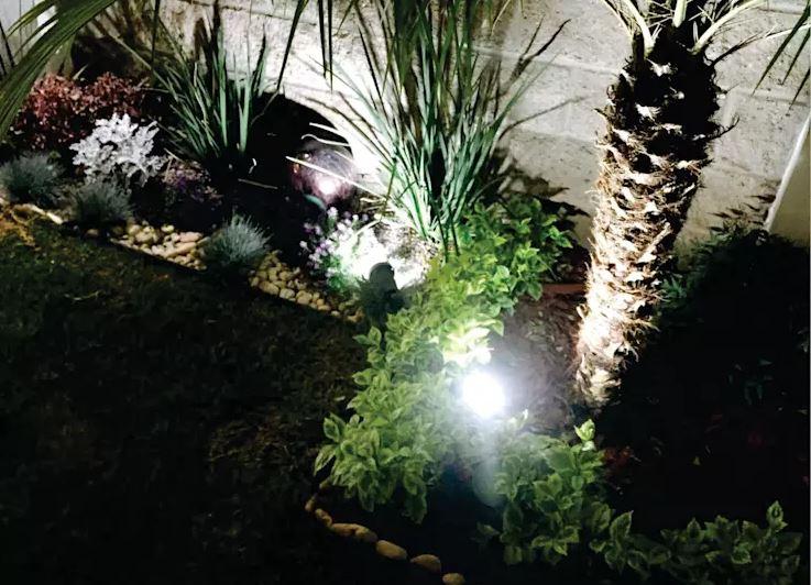 Luces en el jardín