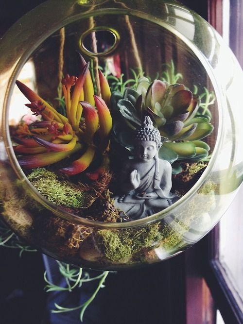 Decoración con plantas en terrarios místicos