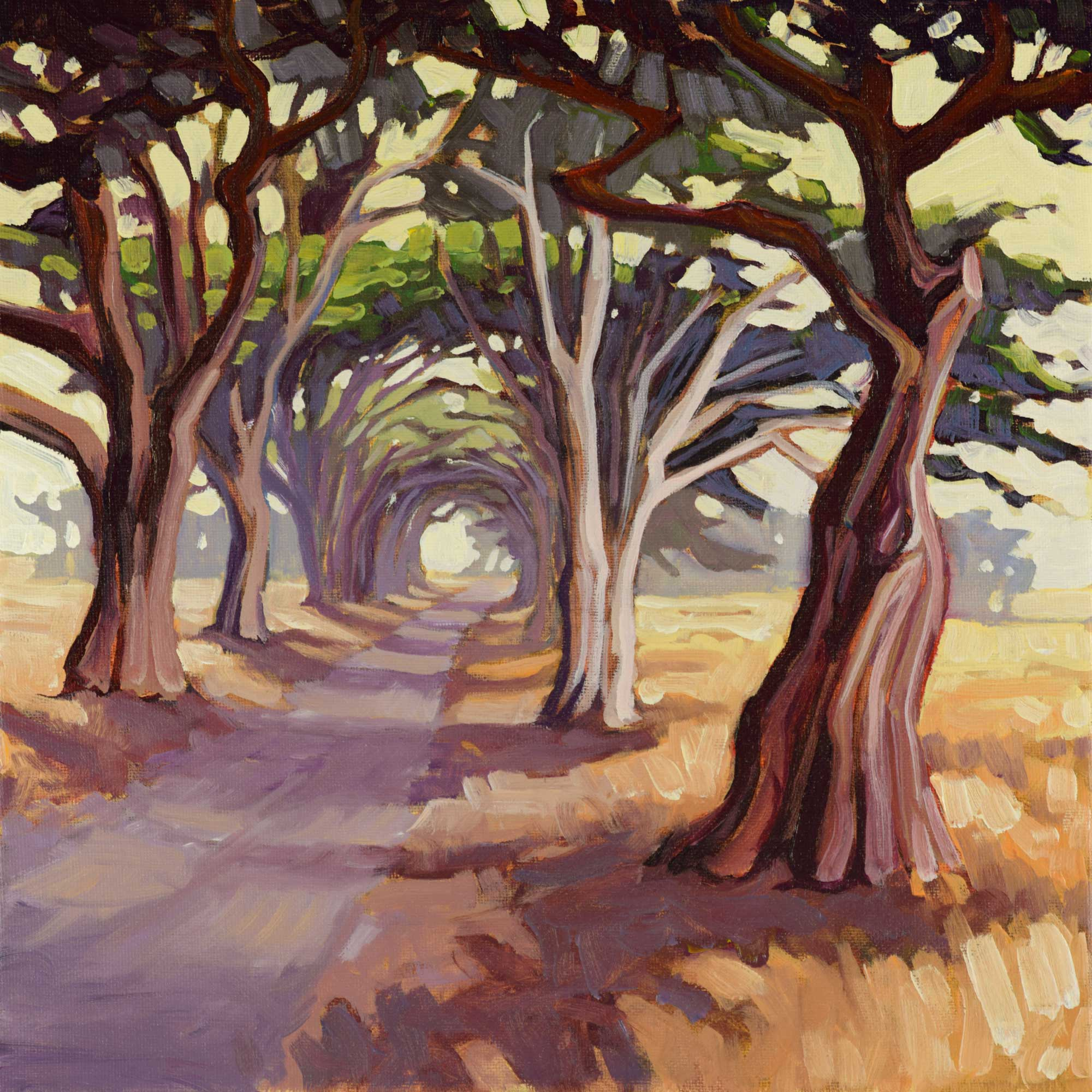 Plein air artwork of the Cypress Tree Tunnel at Point Reyes National Park on the Marin coast of northern California
