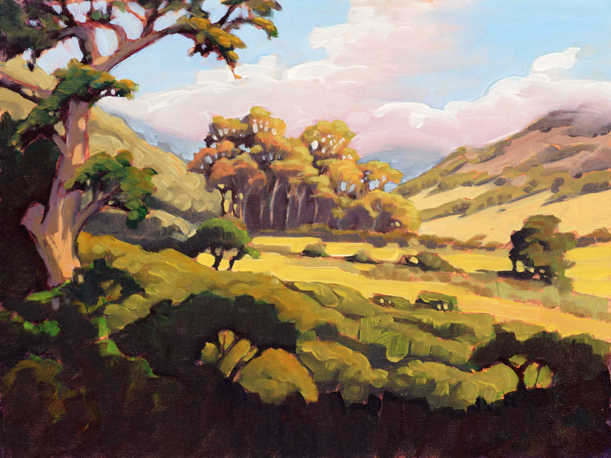A Plein air painting of the central valley of Santa Cruz one of the Channel Islands off the coast of California