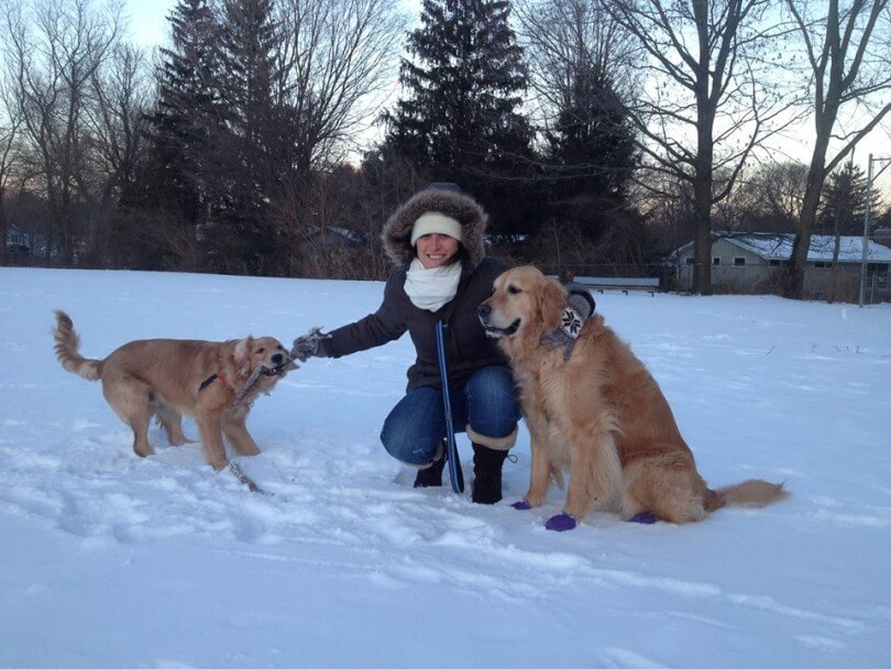 We make sure to protect our dogs paws with some winter dog boots from Pawz!