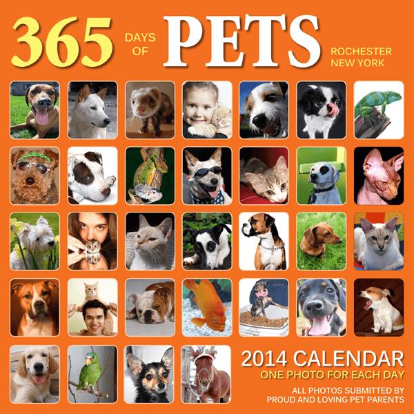 365 Days of Pets Calendar
