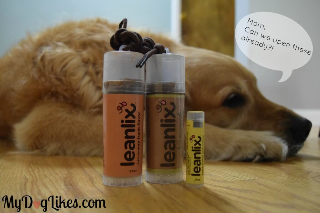 Leanlix treat sticks are a great way to keep your dog right by your side during training.