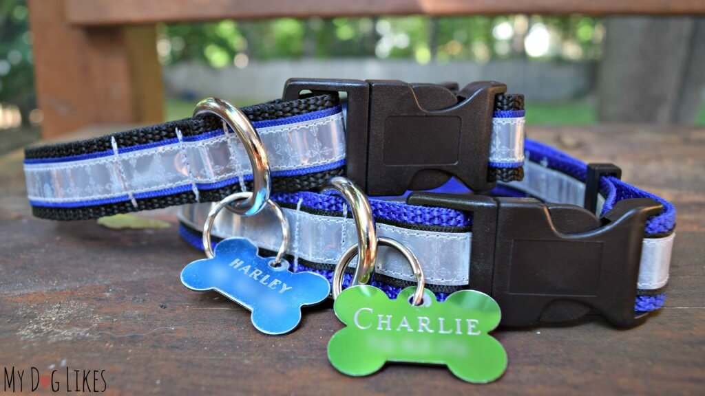Identification tags are a necessity for any dog and could save their life in an emergency!