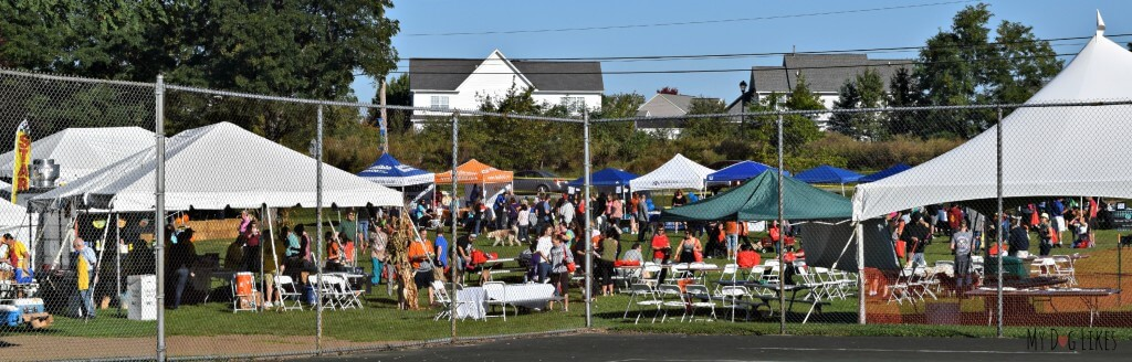 A panoramic view of Lollypop Farm's Barktober Fest 2014
