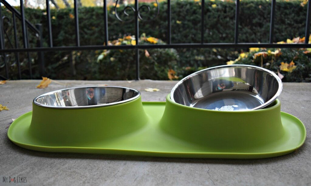 Stainless steel or ceramic bowls are ideal for preventing the growth of bacteria