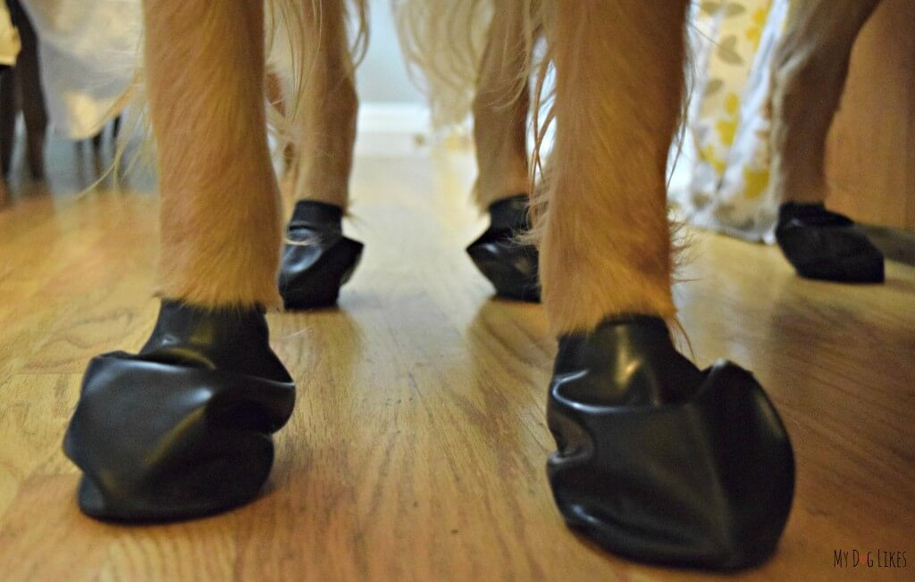 Pawz are Dog Boots That Stay On! They are also reusable, disposable and very affordable!