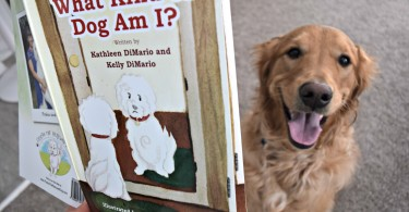"""MyDogLikes reviews """"What Kind of Dog am I?"""" This is an adorable children's book about rescued dog Posha that has a great message."""
