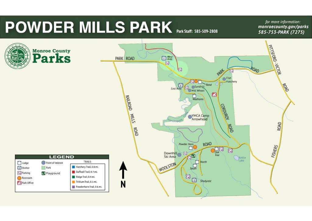 Powder Mills Park Daffodil Trail