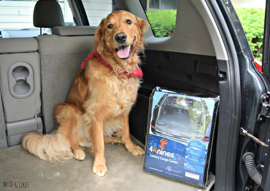 Looking for a luxury dog seat cover? Check out our 4knines Cargo Cover Review to see how they stack up!