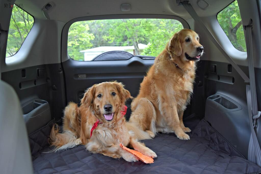 MyDogLikes reviews the 4Knines SUV cargo liner for dogs. See what Harley and Charley thought of this full featured cover!