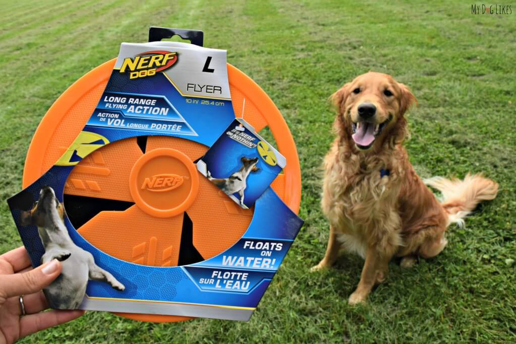 See what Charlie thought of the NERF dog flyer in the official MyDogLikes review!