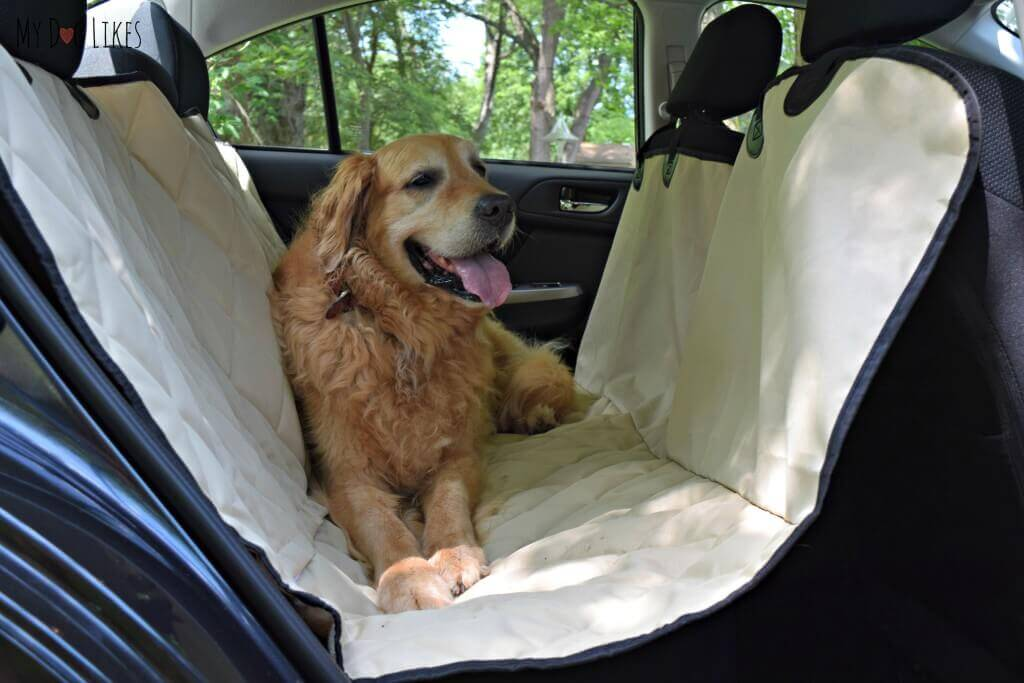 Looking for a Subaru Impreza seat cover? 4Knines has great options in multiple different colors.