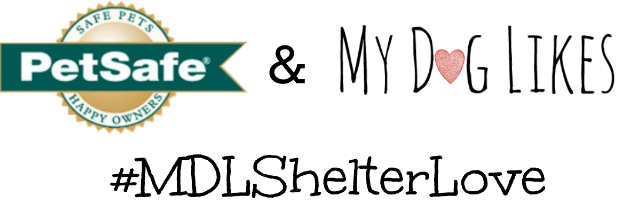 MyDogLikes and PetSafe are partnering up for a special promotion to benefit animal shelters across the country.
