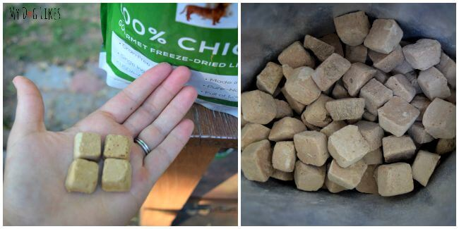 Brave Beagle's Freeze Dried Dog Treats are healthy, lightweight and perfect for training.