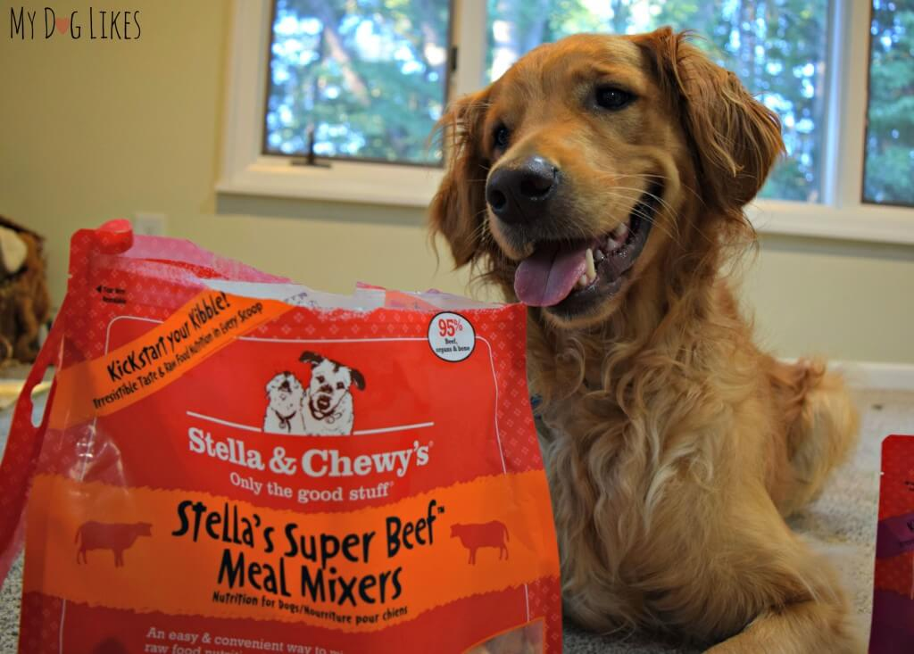 Stella & Chewy's meal mixers allow you to add a bit of freeze dried raw to your dogs current diet.