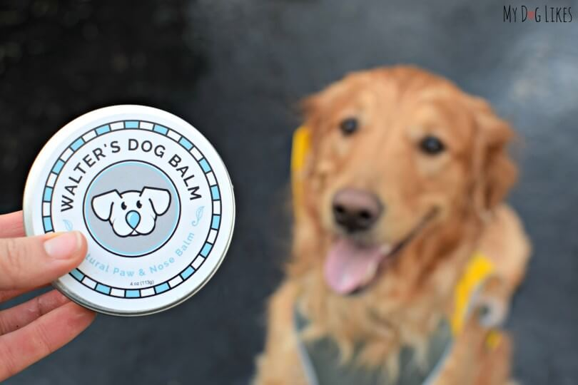 MyDogLikes Walter's Dog Balm review