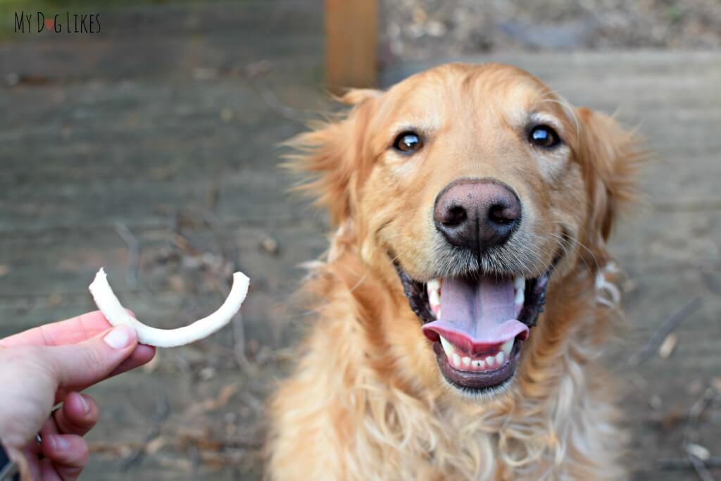 Coconut Smiles single ingredient dog treats