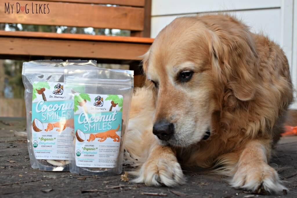 100% Organic Coconut dog treats