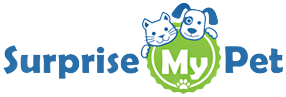 Surprise My Pet Subscription Box Review from MyDogLikes