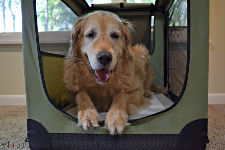 The Chillspot is a great option for those searching for a cooling pad for large dogs.