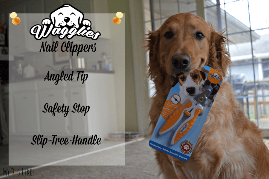 Breaking down the features in our Wagglies Nail Clippers Review