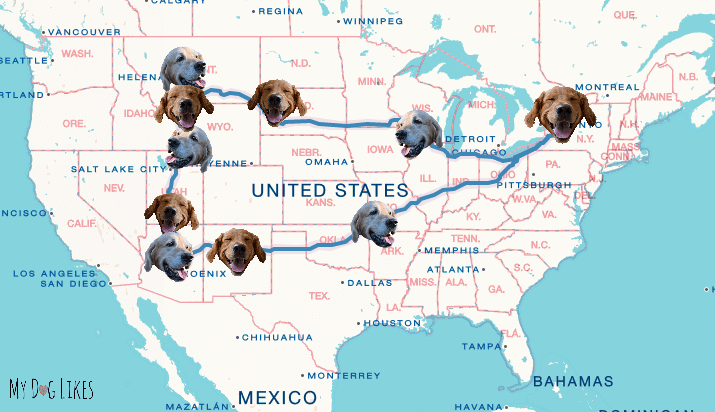 The road trip outline for MyDogLikes Dog Friendly Tour of America - 2016