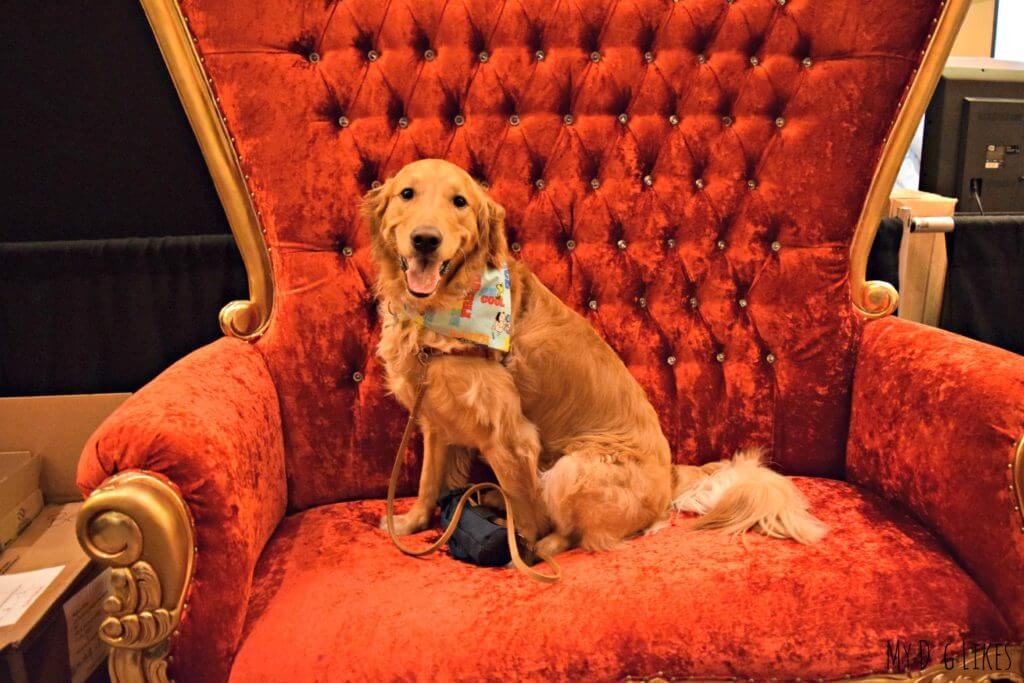King Charlie on his throne (courtesy of the Merrick crew)!