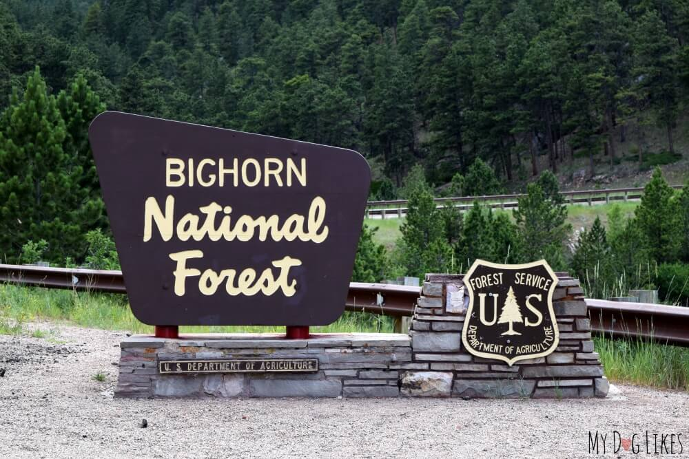 Entering Bighorn National Forest in Central Wyoming