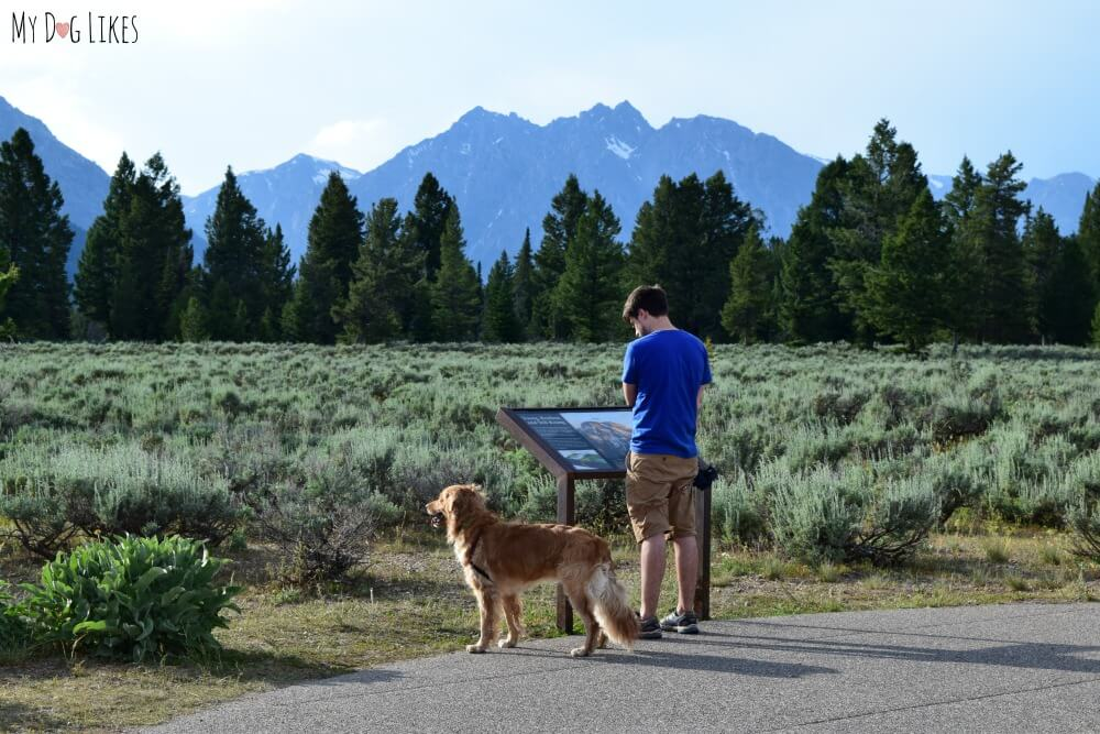 Taking in the sights at Grand Teton National Park