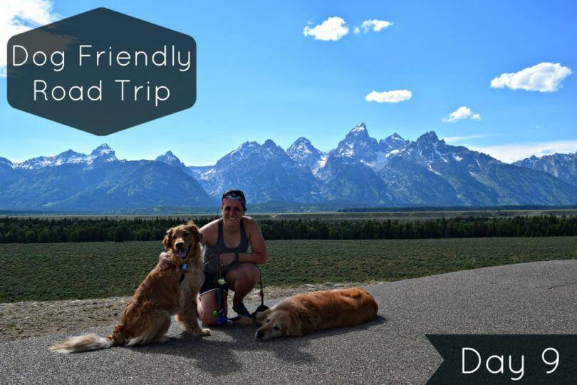 Road Trip Day 9 - Grand Teton National Park