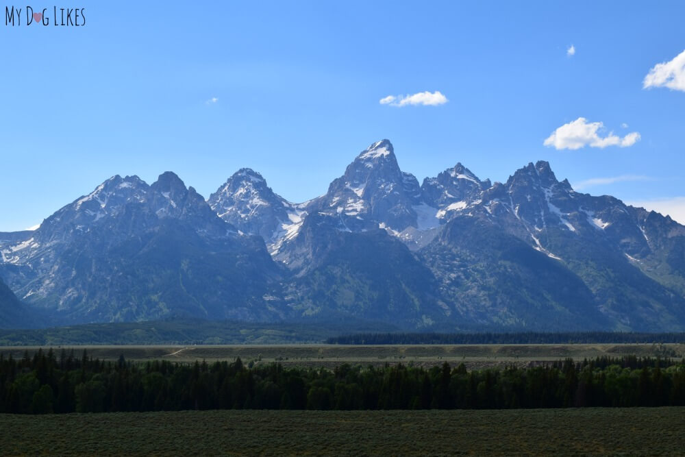 Admiring the Teton Range from RT. 89 on our way up to Yellowstone.