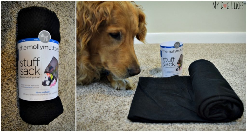 Charlie scoping out the Molly Mutt Stuff Sack which will go inside of his new bed.