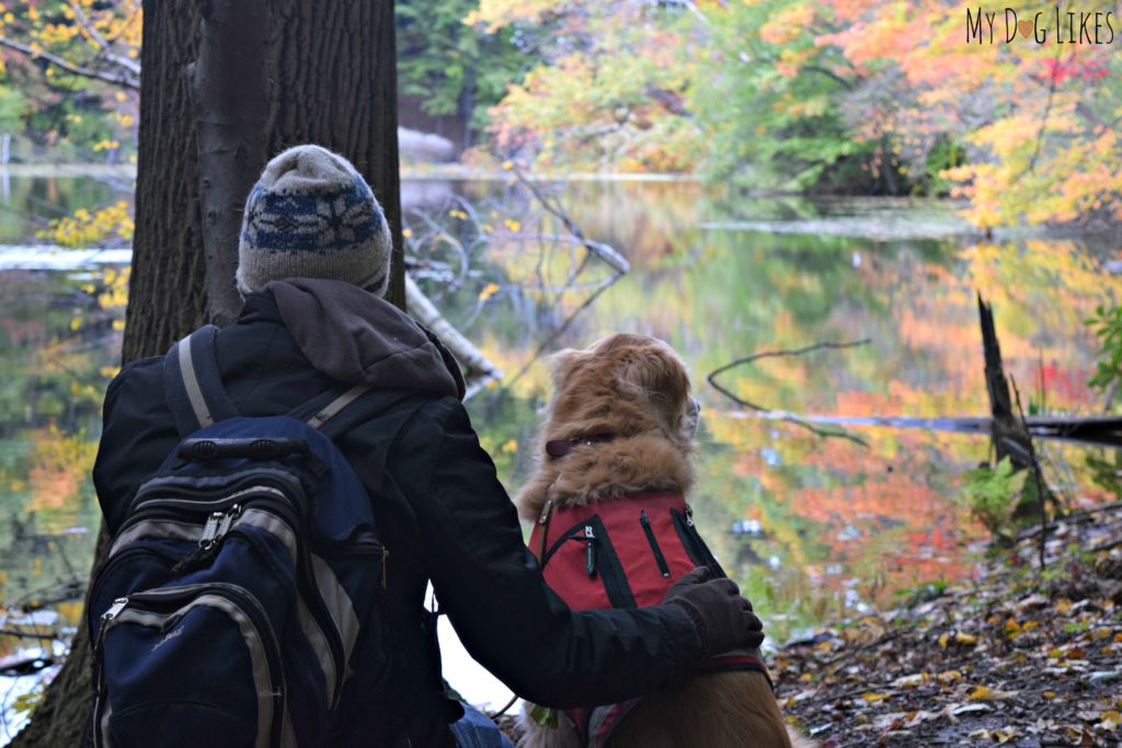 Hiking with dogs at Durand Eastman Park