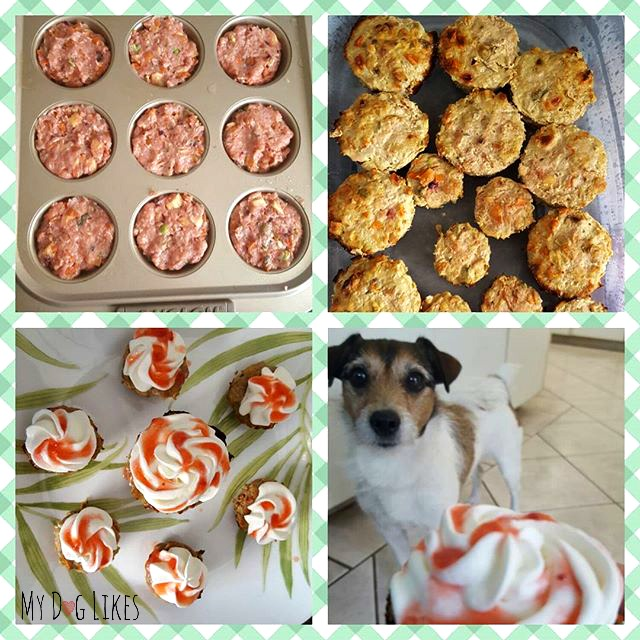 Nala is ready to dig in to her homemade dog cupcakes!