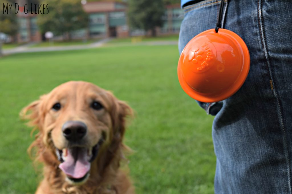 Tennis ball carrier clipped to belt loop.