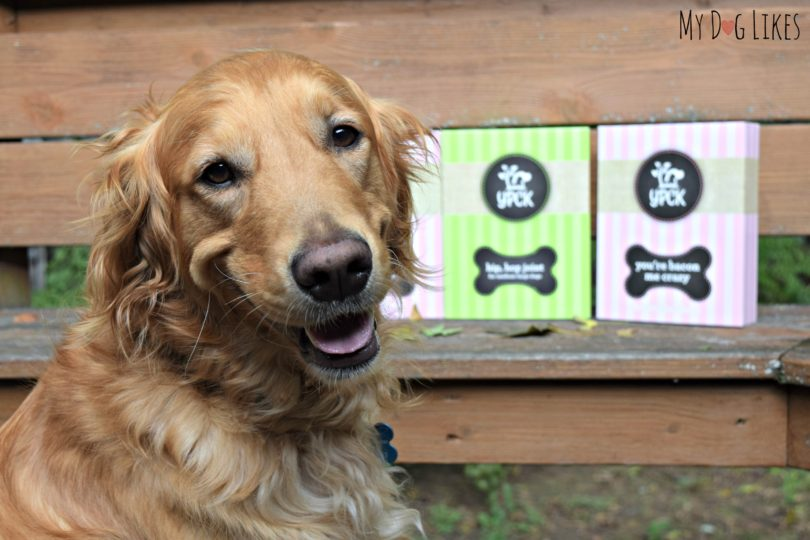 Reviewing dog treats from Yuppy Puppy City Kitty