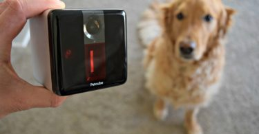 MyDogLikes PetCube Review and User Guide
