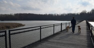 Walking the Boardwalk at Turning Point Park in Rochester, NY